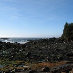 The west coast of Vancouver Island is beautiful.